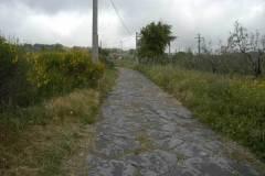 Montefiascone - tratto dell'antica via Cassia