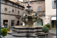 fontana dei leoni